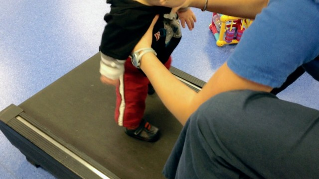 learning to walk treadmill baby therapy down syndrome