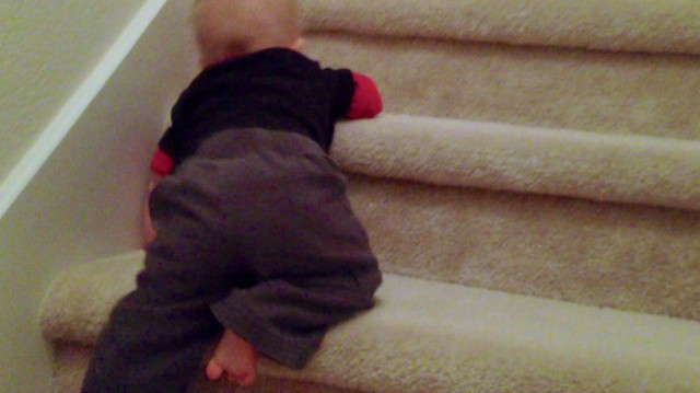 baby crawling stairs first time home