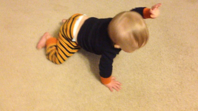 baby down syndrome crawling first time