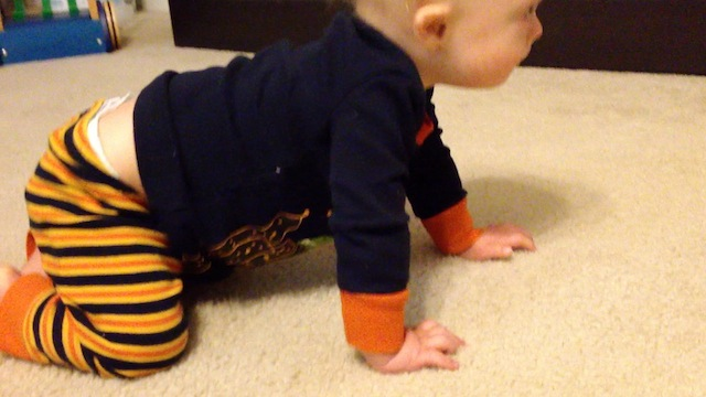 quadruped crawling first time baby