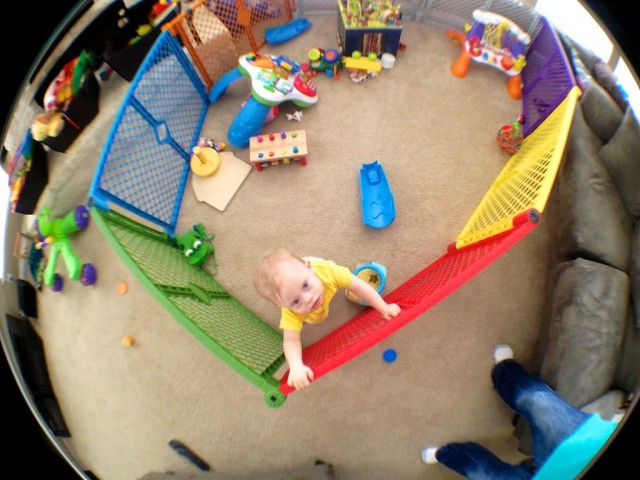 baby climbing over play gate