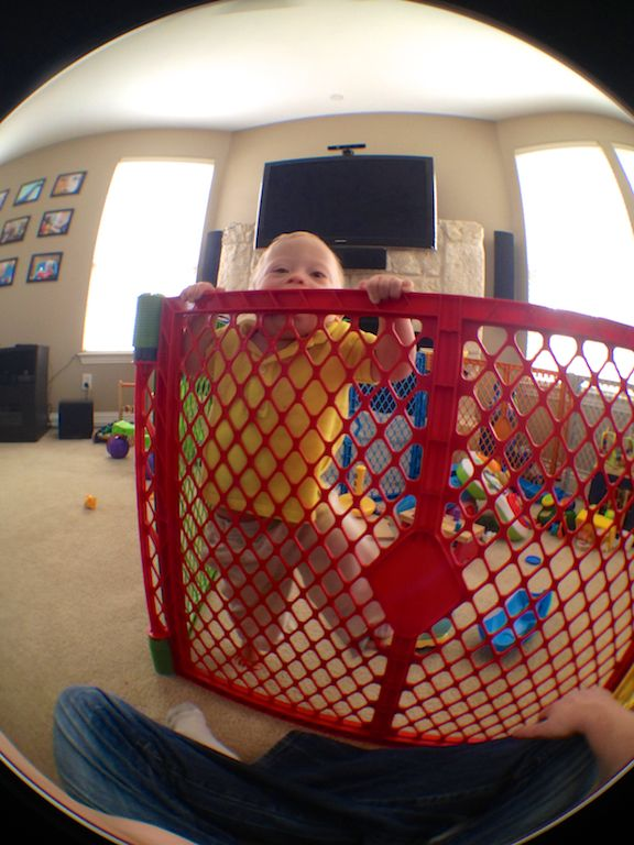 best play gate yard for babies toddlers