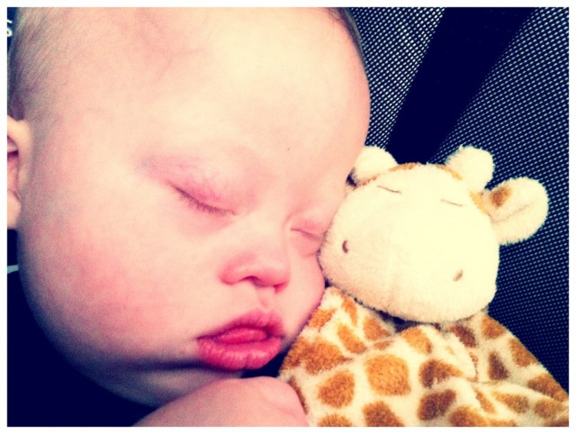 Noah's little sleep buddy
