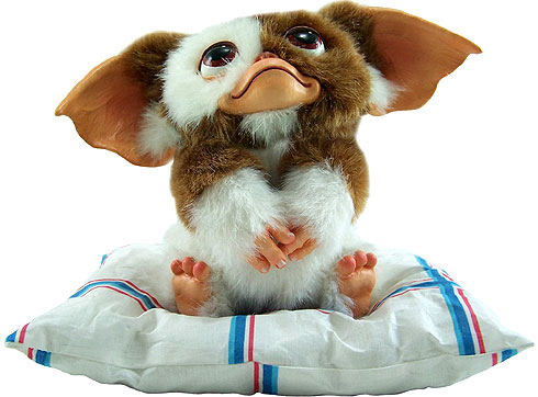 3 rules of raising a mogwai gremlin