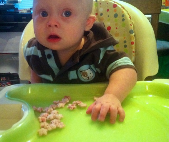 cute boy down syndrome eating gerber puffs