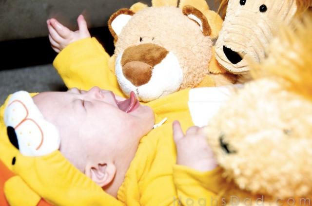 baby lion halloween costume