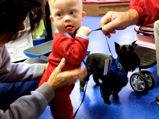 Nervous child with Down syndrome with therapy dog