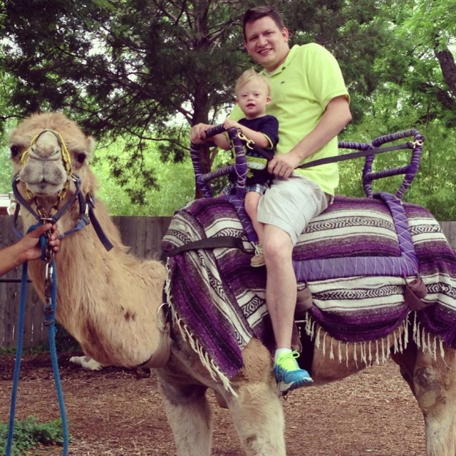riding camel dallas zoo child special needs