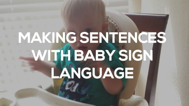 Signing Update: Noah's First Sign Language Sentence!