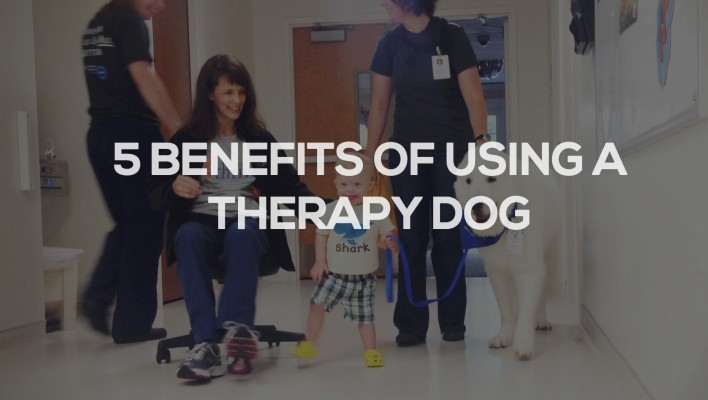 benefits of using therapy dog