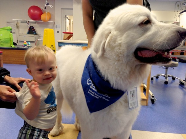therapy dog physical therapy one yearold boy